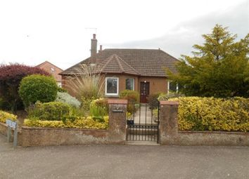 Thumbnail 3 bed detached house to rent in Priestden Road, St. Andrews