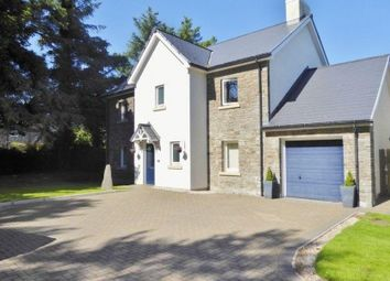 Thumbnail 4 bed property to rent in Croit Ny Glionney, Colby, Isle Of Man