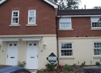 Thumbnail 2 bed terraced house to rent in Ethelreda Drive, Thetford