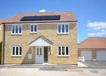 Thumbnail 4 bedroom detached house to rent in Collingham Close, Templecombe