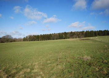 Thumbnail Land for sale in Birchwood, Storridge, Worcestershire
