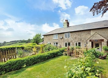 Thumbnail 3 bedroom cottage for sale in 3 Wind Whistle Cottage, Lower Blandford Road, Cann, Shaftesbury, Dorset