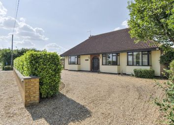 Thumbnail 5 bedroom detached house to rent in Newmarket Road, Stow-Cum-Quy, Cambridge