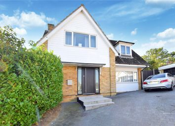 Thumbnail 4 bed detached house for sale in Shellcroft, Colne Engaine, Colchester