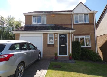 Thumbnail 3 bed detached house for sale in Holly Close, Hexham