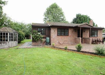 Thumbnail 2 bed detached bungalow to rent in Green Lane, Eaton Bray, Dunstable