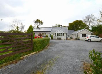 Thumbnail 4 bedroom detached bungalow for sale in Capel Hendre, Ammanford