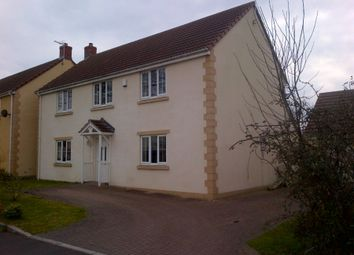 Thumbnail 4 bed detached house to rent in The Orchards, Meare, Glastonbury