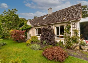 Thumbnail 5 bed detached house for sale in Church Cottage, Ford