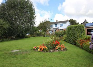 Thumbnail 4 bed detached house for sale in Meadowside, Ashford, Barnstaple