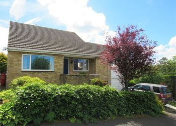Thumbnail 3 bed detached bungalow for sale in Wentworth Park, Allendale