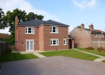 Thumbnail 4 bed bungalow to rent in North Street, Blofield, Norwich