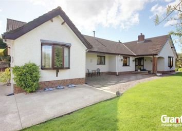 Thumbnail 6 bed detached bungalow for sale in Thorny Hill Road, Killinchy