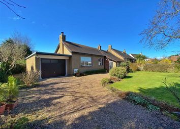 2 bed semi-detached bungalow for sale in 6, Murrayfield Road, St Andrews, Fife KY16