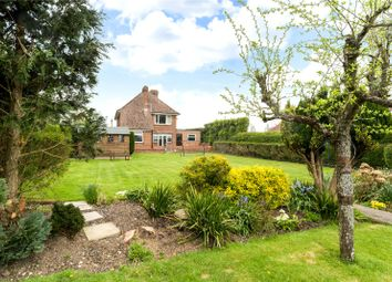 Thumbnail 3 bed detached house for sale in Eastergate Lane, Eastergate, Chichester