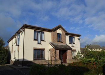Thumbnail 2 bed flat to rent in Farmhill, Douglas