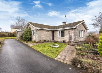 Thumbnail 3 bedroom detached bungalow for sale in Hay On Wye 8 Miles, Brecon 8 Miles