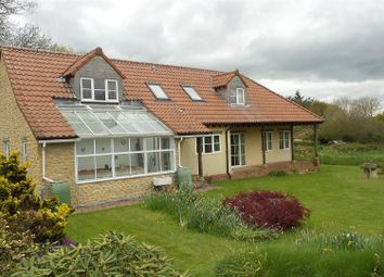 Thumbnail 4 bedroom detached bungalow for sale in Forton Road, Chard