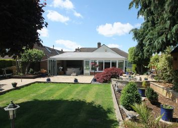 Thumbnail 3 bed detached bungalow for sale in Seymour Close, Wells