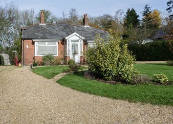 Thumbnail 3 bed detached bungalow for sale in Forestside, Rowland's Castle, West Sussex