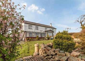 Thumbnail 3 bed detached house for sale in Hollacombe, Holsworthy