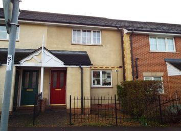 Thumbnail 2 bed property to rent in Rake Road, Liss