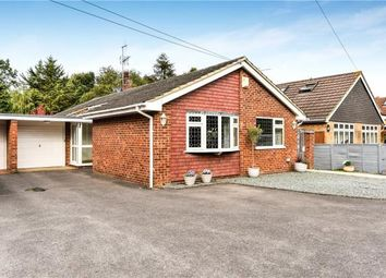 Thumbnail 3 bed detached bungalow for sale in Ascot Road, Holyport, Maidenhead
