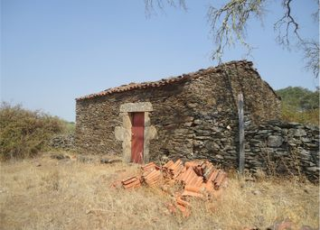 Thumbnail Farm for sale in Idanha-A-Nova, Idanha-A-Nova, Castelo Branco, Central Portugal