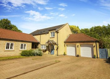 Thumbnail 4 bedroom detached house to rent in Cramlington
