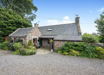 Thumbnail 4 bed detached house for sale in Brawliemuir Farmhouse, Johnshaven, Montrose, Angus