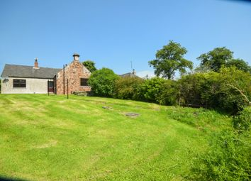 Thumbnail 3 bed semi-detached house to rent in Farnell, Brechin, Angus