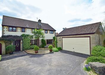 Thumbnail 4 bedroom detached house for sale in Glovers Close, Milborne Port, Sherborne