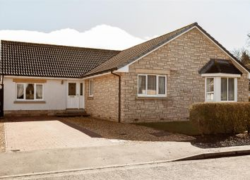 Thumbnail 4 bed detached bungalow for sale in Taypark Road, Luncarty, Perth