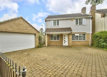 Thumbnail 4 bed detached house for sale in Cedar Close, Grafham, Huntingdon, Cambridgeshire