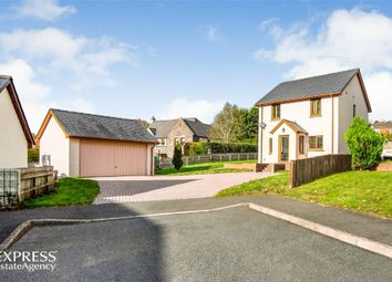 Thumbnail 4 bed detached house for sale in Lime Tree Close, Brecon, Powys