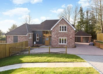 Thumbnail 5 bed detached house for sale in Forest Walk, The Glen, Pamber Heath