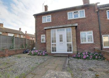 Thumbnail 4 bed semi-detached house to rent in Lime Avenue, Colchester