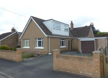 Thumbnail 4 bed detached bungalow to rent in Irfon Road, Builth Wells