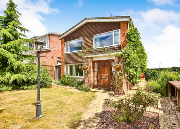 3 bed detached house for sale in Ashby Road, Thurton, Norwich NR14