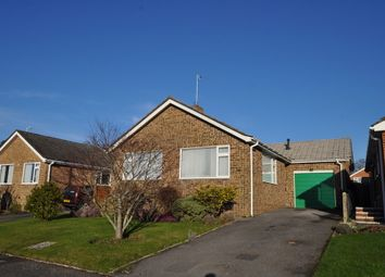 Thumbnail 2 bed detached bungalow to rent in Byron Road, Wimborne, Dorset