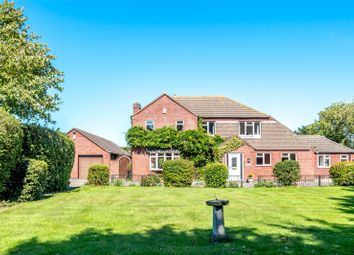 Thumbnail 4 bed equestrian property for sale in Paddock House, School Lane, Aby, Alford