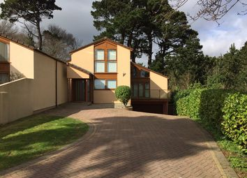 Thumbnail 6 bed detached house for sale in Hollacombe Lane, Preston, Paignton