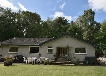 Thumbnail 4 bed bungalow for sale in Essendy Road, Blairgowrie