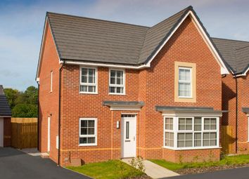 """Thumbnail 4 bed detached house for sale in """"Cambridge"""" at Park Hall Road, Mansfield Woodhouse, Mansfield"""