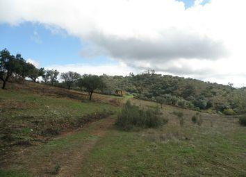 Thumbnail Land for sale in Monte Dom Pedro, Alandroal (Nossa Senhora Da Conceição), São Brás Dos Matos (Mina Do Bugalho) E Juromenha (Nossa Senhora Do Loreto), Alandroal
