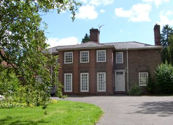 Thumbnail 6 bed detached house to rent in Stane Street, Ockley, Dorking
