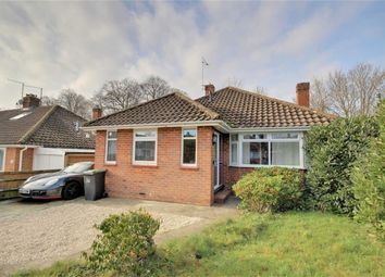 Thumbnail 3 bed detached bungalow for sale in Beeches Avenue, Charmandean, Worthing, West Sussex