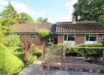Thumbnail 3 bed detached bungalow for sale in Hook Hill Lane, Woking