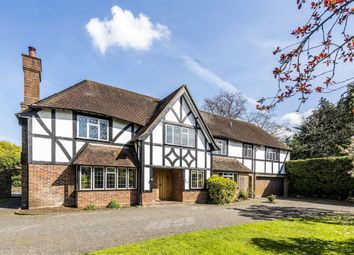 Thumbnail 6 bed property to rent in Silverdale Avenue, Walton-On-Thames