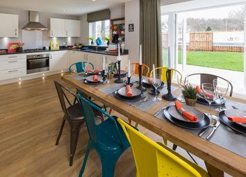 "Thumbnail 4 bedroom detached house for sale in ""Cullen"" at Victoria Street, Monifieth, Dundee"